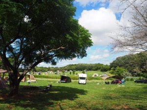 キャンプ場 景色