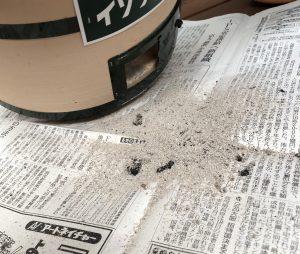 灰を処分する